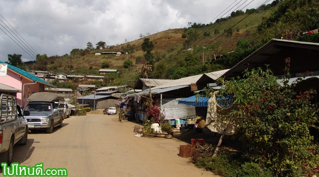 หมู่บ้านจีนฮ่อ สภาพความเป็นอยู่จะดีกว่า ชาวเขาอื่นๆ บางหลังมีทีวี รถกระบะ และสิ่งอำนวยความสะดวก อาจเป็นเพราะความที่เป็น พ่อค้าแม่ค้าในสายเลือด แทนที่จะทำเกษตร