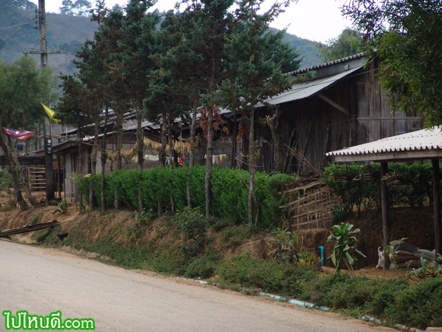 ข้างถนน สู่หมู่บ้านนอแล
