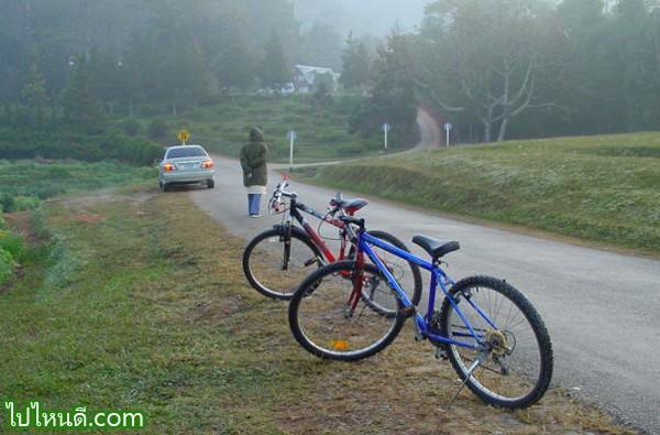 หรือไม่มีรถยนต์ก็ จักรยานเป็นไง แต่ต้องฝ่าลมหนาวเอง เน้อ...
