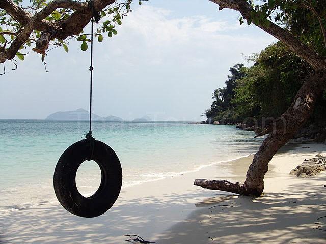 นั่งพักเล่น หลบร่ม ที่ใต้ต้นไม้ใหญ่