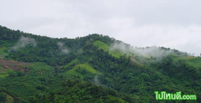 ฝนตกทำให้ถนนลื่น แต่ก็เพราะฝนตก ผมจึงได้เห็นเมฆลอยเหนือยอดเขาอันเขียวขจี อากาศดูสดชื่นขึ้นกว่าเดิมอีกมิใช่รึ ได้อย่างเสียอย่าง มีทั้งลบและบวกเสมอ ... ปรัชญาชีวิต