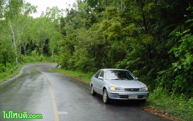 ขับรถมู่สู่ดอยภูคา...ขับไปเรื่อยๆ กำลังขึ้นดอยไม่รู้ตัว ไม่ค่อยมีรถสวน  มีแต่เสียเพลงจากวิทยุในรถยนต์ ผมจึงเริ่มหรี่เสียง เปิดหน้าต่างรถ สูดอากาศ(หลังฝนหยุดตก) เสียงนกร้องเป็นจุดๆ ดังบ้าง เบาบ้าง ก้องไพรแห่งนี้ ก็เลยตัดสินใจหยุดรถ ชมบรรยากาศแถวๆ นี้ซะหน่อย ในอารมณ์ที่ไม่รีบเร่งนัก