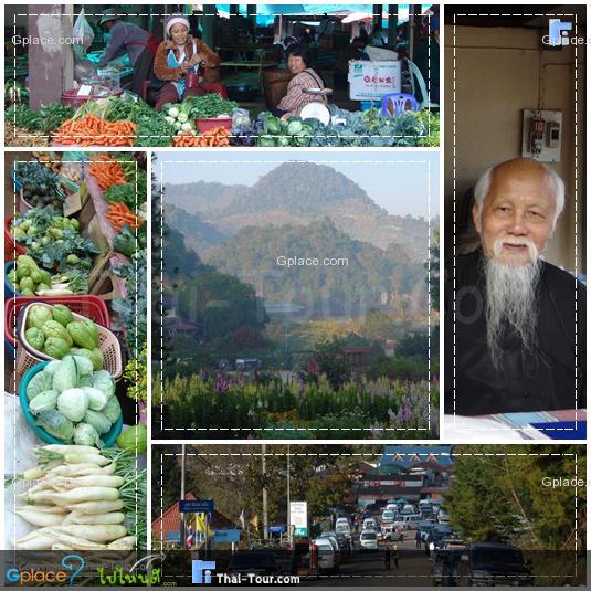 """สถานีเกษตรหลวงอ่างขาง จากการเสด็จพระราชดำเนินของ พระบาทสมเด็จพระเจ้าอยู่หัว พร้อมด้วยสมเด็จพระนางเจ้าฯพระบรมราชินีนาถ ไปเยี่ยมพสกนิกรและชาวไทยภูเขาหลายหมู่บ้าน ทรงทอดพระเนตรเห็นว่า ชาวเขาส่วนใหญ่ปลูกฝิ่นแต่ยากจน ทั้งยังทำลายทรัพยากรป่าไม้ต้นน้ำลำธาร ซึ่งเป็นแหล่งสำคัญต่อระบบนิเวศโดยรวมของประเทศชาติ ที่อาจก่อให้เกิดความเสียหายต่อประเทศชาติในอนาคตได้ ดอยอ่างขางก็เกิดปัญหาดังกล่าวที่จำเป็นต้องเข้ามาดำเนินการแก้ไขด้วยเช่นกัน ในครั้งนั้น พระบาทสมเด็จพระเจ้าอยู่หัว จึงได้ทรงสละพระราชทรัพย์ส่วนพระองค์ เป็นจำนวน 1,500 บาท เพื่อซื้อที่ดิน และไร่จากชาวเขา ในบริเวณดอยอ่างขางส่วนหนึ่ง จากนั้นก็ทรงมอบหมายให้หม่อมเจ้าภีศเดชรัชนี ดำเนินการใช้เป็นสถานีทดลอง ปลูกไม้เมืองหนาว ให้เป็นตัวอย่างแก่ชาวเขา เพื่อชาวเขาจะได้นำวิธีการไปใช้ เพื่อให้บรรลุวัตถุประสงค์ดังที่ ทรงพระราชทานไว้ว่า """"ให้ช่วยเขาช่วยตัวเอง""""  งานพัฒนาคุณภาพชีวิตของชาวเขา และพัฒนาการใช้ทรัพยากรธรรมชาติ ได้เริ่มต้นขึ้นด้วย  โครงการในพระบรมราชานุเคราะห์ชาวเขาตั้งแต่เมื่อ ได้โปรดเกล้าฯจัดตั้ง โครงการหลวงเป็นโครงการส่วนพระองค์ เมื่อปีพ.ศ. 2512 การดำเนินงานของดอยอ่างขาง ก็ได้พัฒนาเป็นสถานีเกษตรหลวงอ่างขางกลางปีพ.ศ. 2514 ไต้หวันได้จัดส่งผู้เชี่ยวชาญมาศึกษาสภาพพื้นที่ และความเหมาะสมในการปลูกไม้ผลเมืองหนาว หลังจากนั้นก็ได้ส่งเชื้อเห็ดหอม และพันธุ์พืชถวายโดยไม่คิดมูลค่า เพื่อให้ทรงนำมาใช้ประโยชน์ ตามพระราชประสงค์ในโครงการหลวง โดยเฉพาะการเพาะเห็ดหอมนั้น เมื่อนำมาเพาะกับไม้ก่อ ซึ่งเป็นไม้ท้องถิ่นของภาคเหนือก็จะได้ผลผลิตเห็ดหอมสดๆ ส่งออกตลาดได้เป็นจำนวนมาก ในปัจจุบันสถานี เกษตร หลวง อ่าง ขาง ได้ ทดลอง ปลูก ไม้ ผล เมือง หนาว โดย เริ่ม จาก การ ปลูก แอปเปิ้ล และ พันธุ์ ไม้ อื่น ๆ ตาม มา ---------------------------- ตลาดหมู่บ้านคุ้ม"""