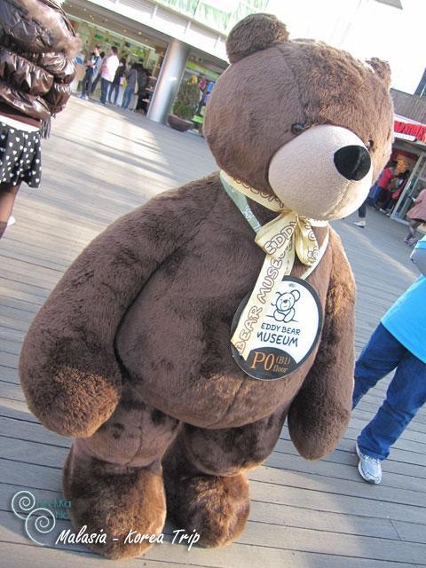 ขึ้นมาก็เจอพี่หมี ตัวหย่ายยย