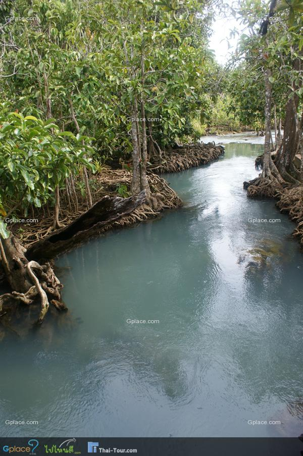 คลองสองน้ำ คือ น้ำจืด จากเขาครามไหลมาผสมกับน้ำเค็มเมื่อยามน้ำทะเลขึ้นสูง จึงเป็นชื่อเรียกของผืนป่าที่นี่