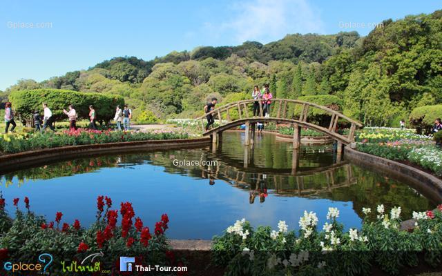 สวนไม้ดอกเมืองหนาวกับวิว 360 องศา ข้างพระธาตุฯ