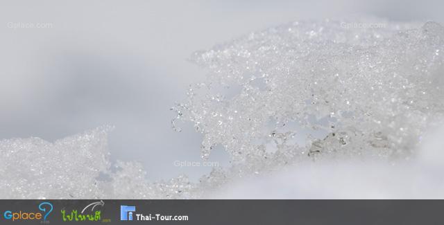 เกล็ดน้ำแข็ง วันนี้แดดแรงกว่า 2 วันก่อน หิมะเริ่มละลาย