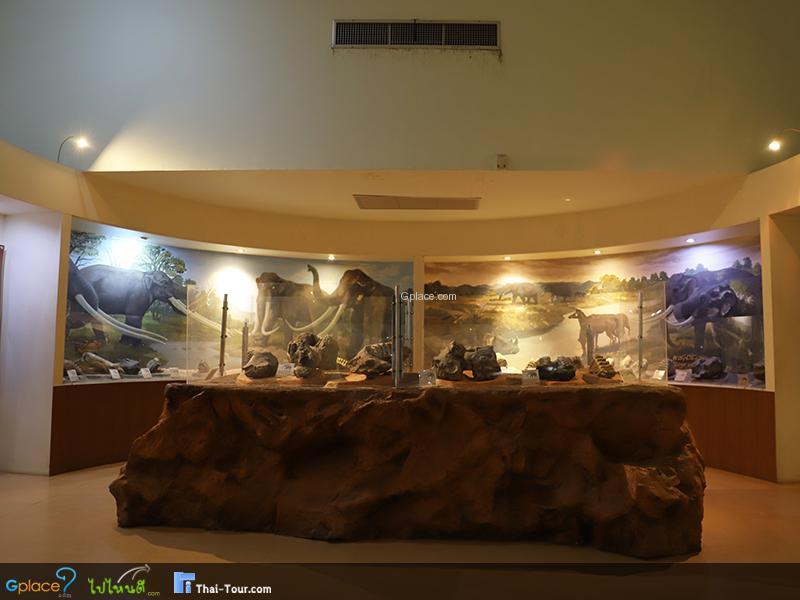 พิพิธภัณฑ์ไม้กลายเป็นหิน
