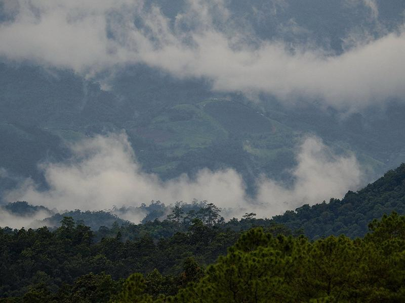Doi Luang Chiang Dao National Park