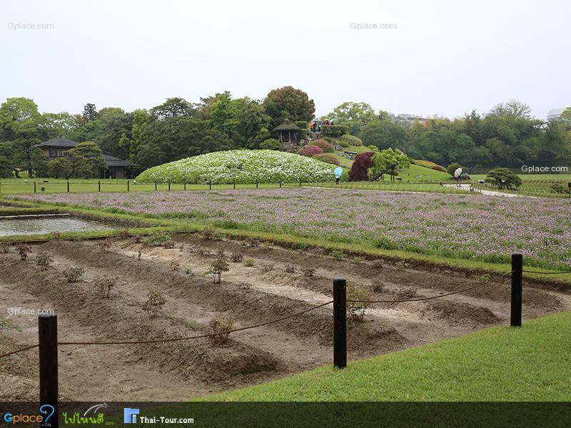 สวนโคระคุเอน โอคายาม่า