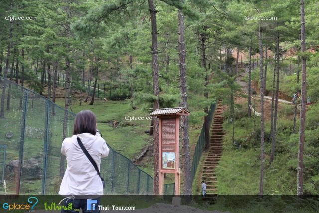 สวนสัตว์เมืองทิมพู