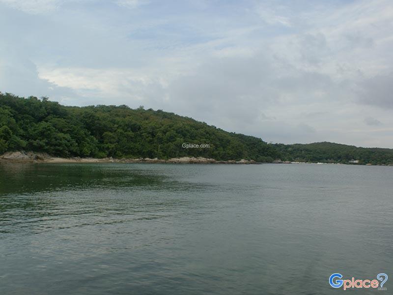 石斑鱼湾   珊瑚湾