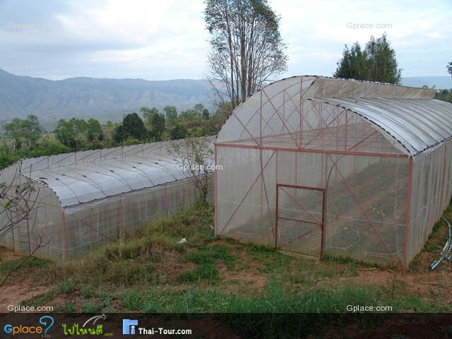 สถานีทดลองเกษตรที่สูงภูเรือ
