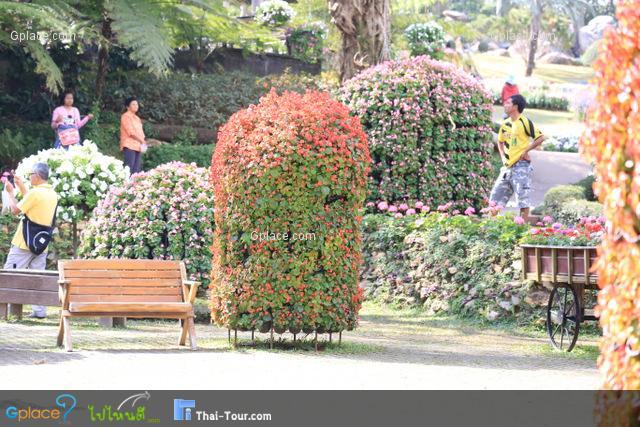 ภายในสวนแม่ฟ้าหลวงประดับประดาด้วยดอกไม้
