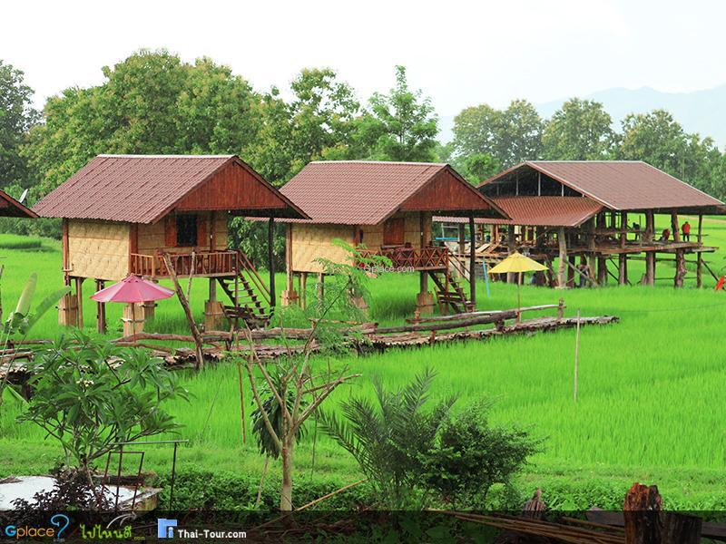 Thai Lue Coffee House