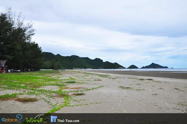 หาดบางปู