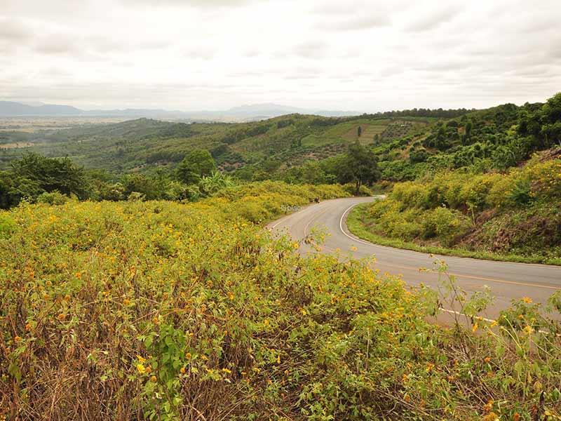 Mai Ya Viewpoint