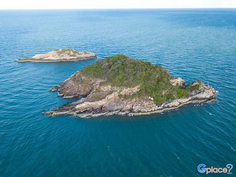 เกาะสะเดาเกาะขี้นก