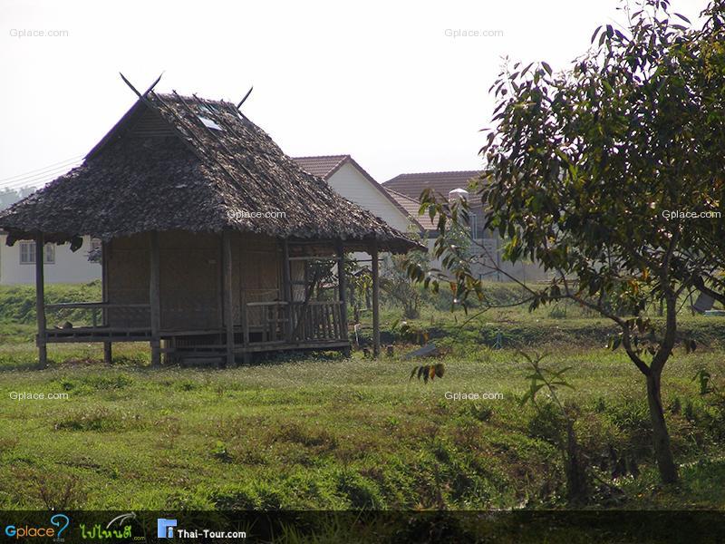 บ้านควายไทย