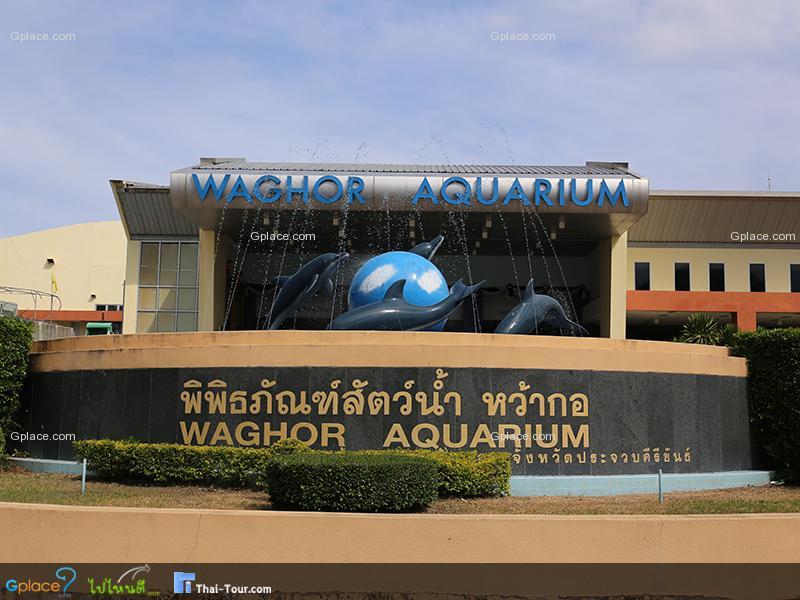 พิพิธภัณฑ์สัตว์น้ำหว้ากอ Waghor Aquarium