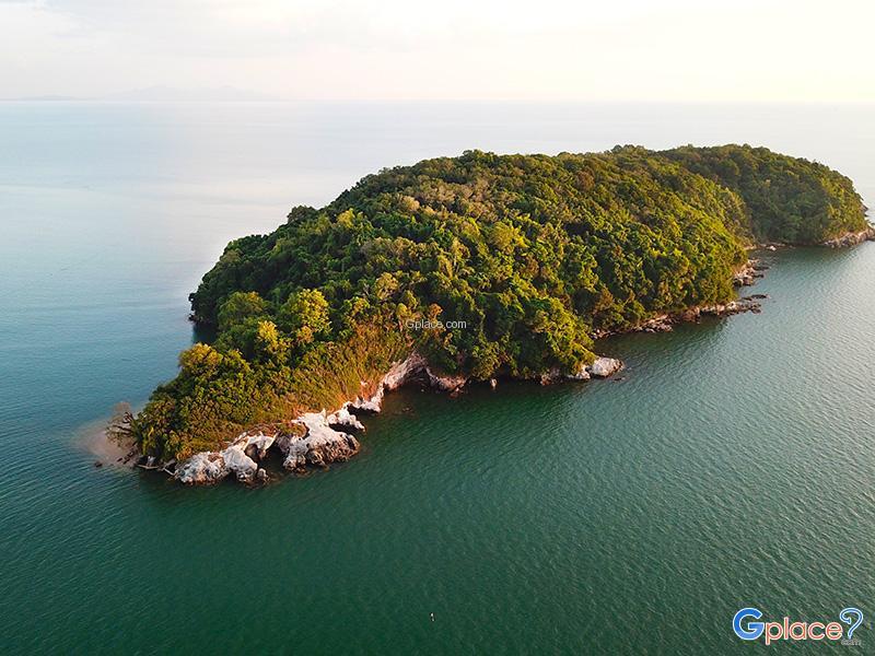 เกาะกวาง