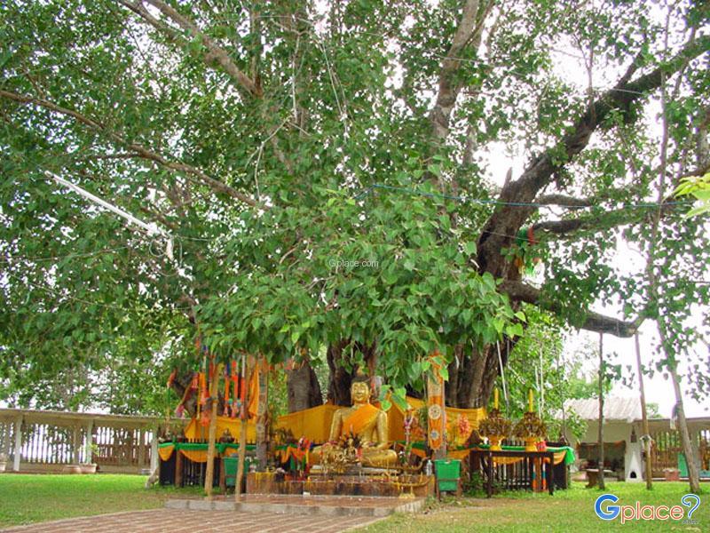 Wat Si Maha Pho