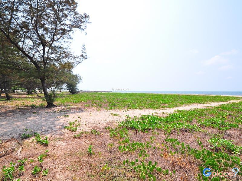 หาดแหลมเจริญ