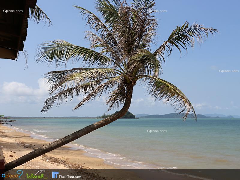 หาดภราดรภาพ