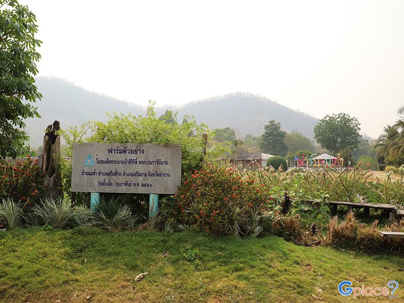 โครงการฟาร์มตัวอย่างตามพระราชดำริบ้านแม่ต๋ำ