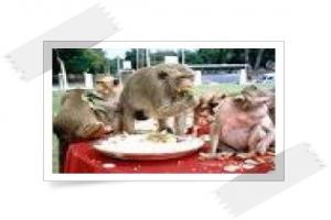 งานเลี้ยงโต๊ะจีนลิง