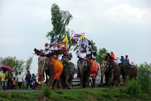 ประเพณีบวชนาคช้างเฉลิมพระกียรติ
