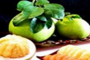 เทศกาลส้มโอกระฉ่อนนครนายกและสินค้าวิสาหกิจชุมชน