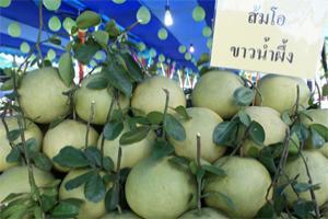 งานส้มโอมณฑลนครชัยศรี จังหวัดนครปฐม ครั้งที่ 13