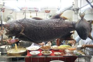 ฮ้อข้าวต้มปลา