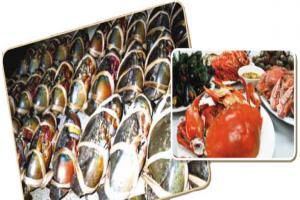 งานเทศกาลอาหารทะเล จ สมุทรสาคร ครั้งที่11
